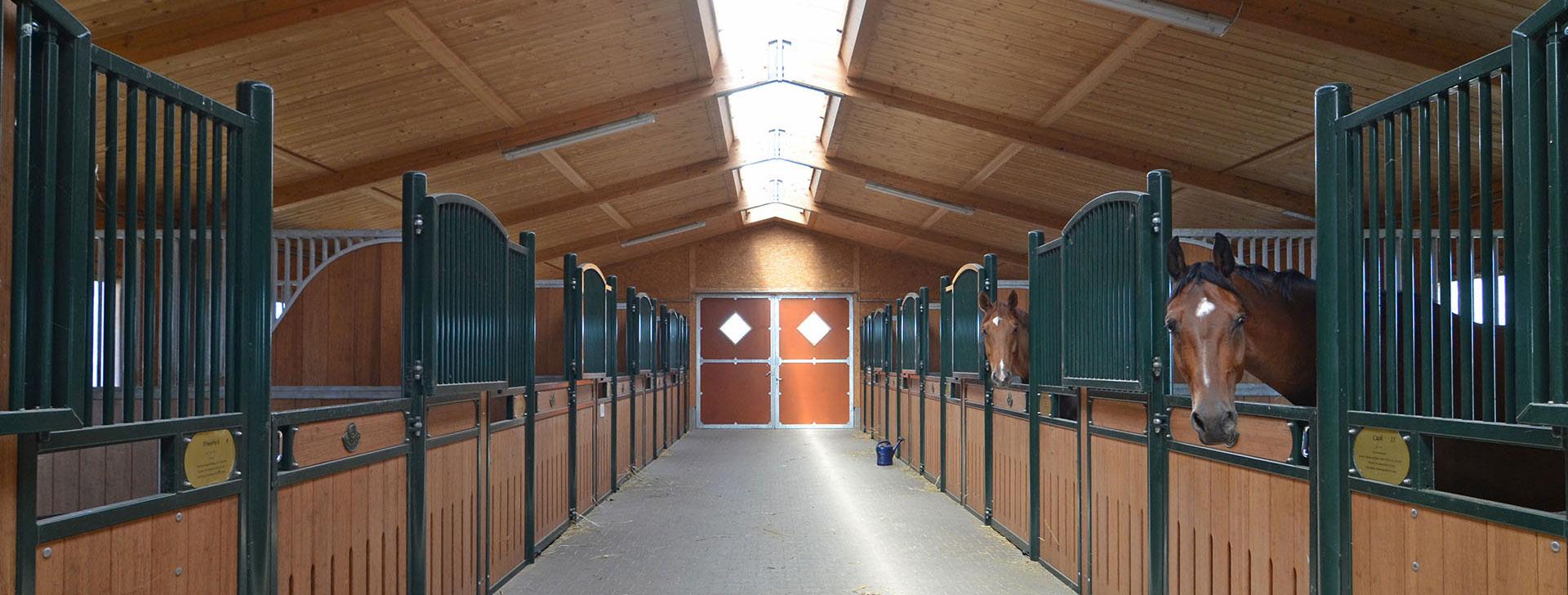 Pferdestall mit Rahmenkonstruktion