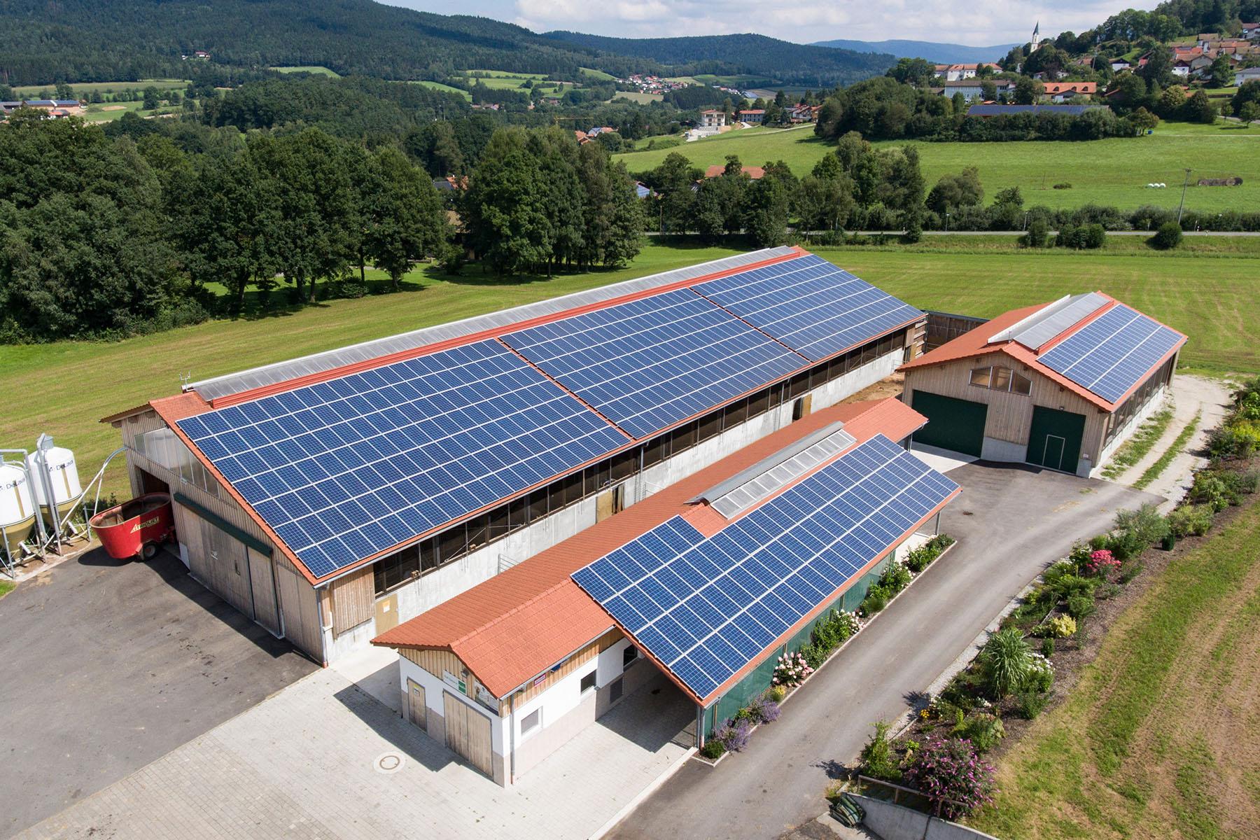 Kälberstall mit Photovoltaikanlage