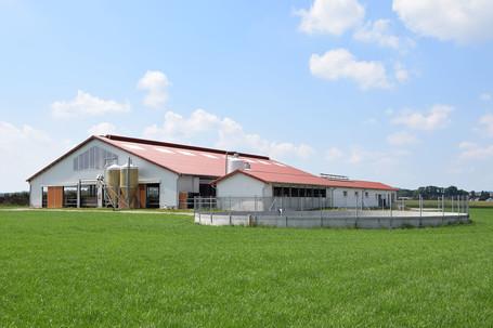 Kuhstall mit Nebengebäude
