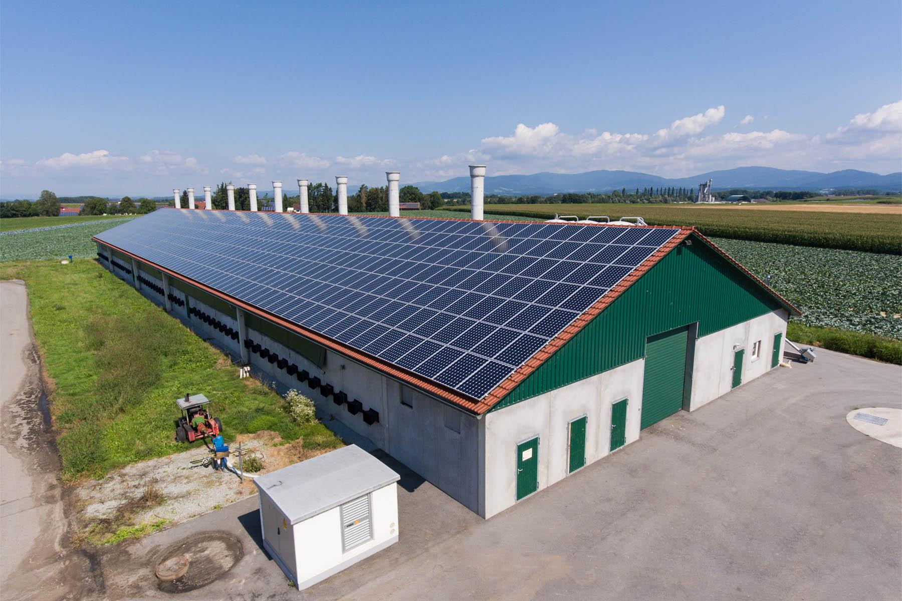Stall mit Photovoltaikanlage